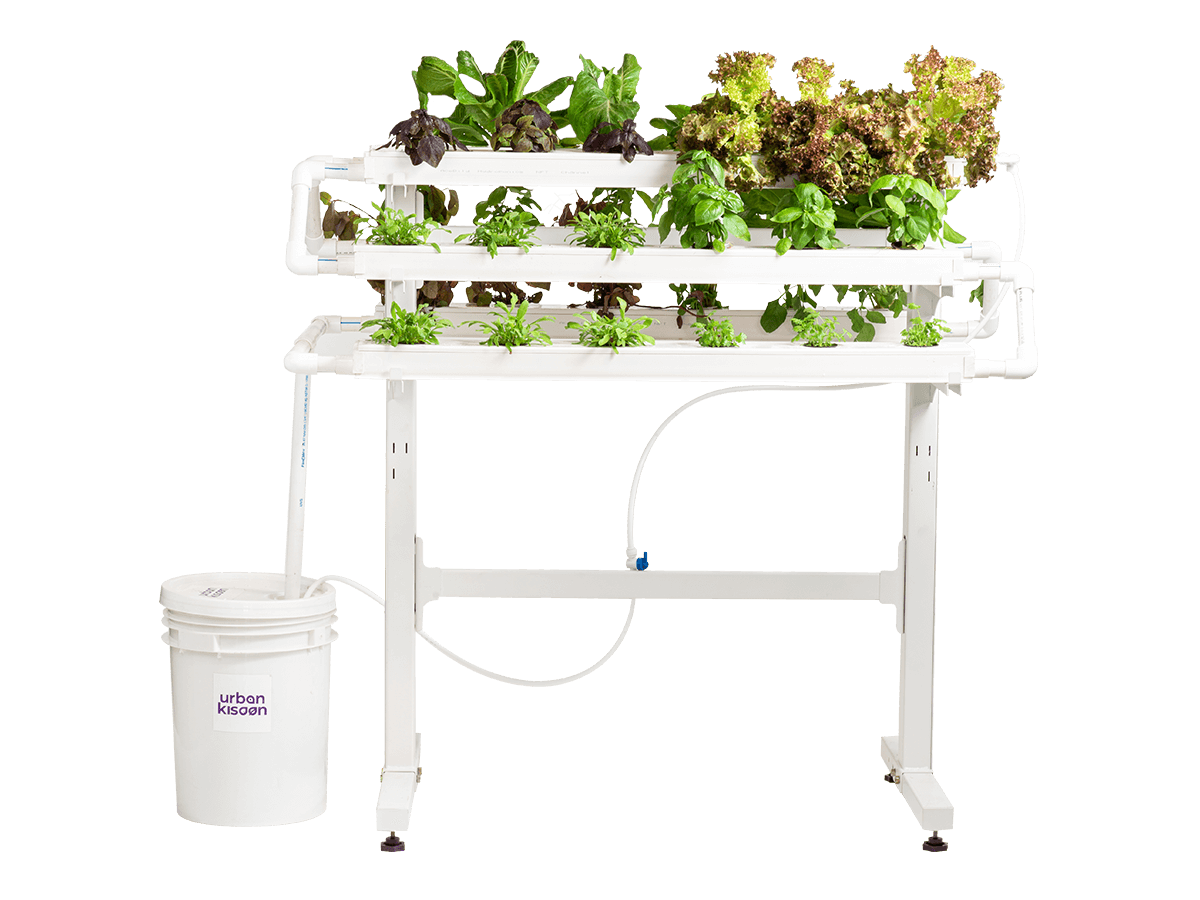 Hydroponics 18 plant model kit from Urban Kisaan based on soil less indoor farming technology
