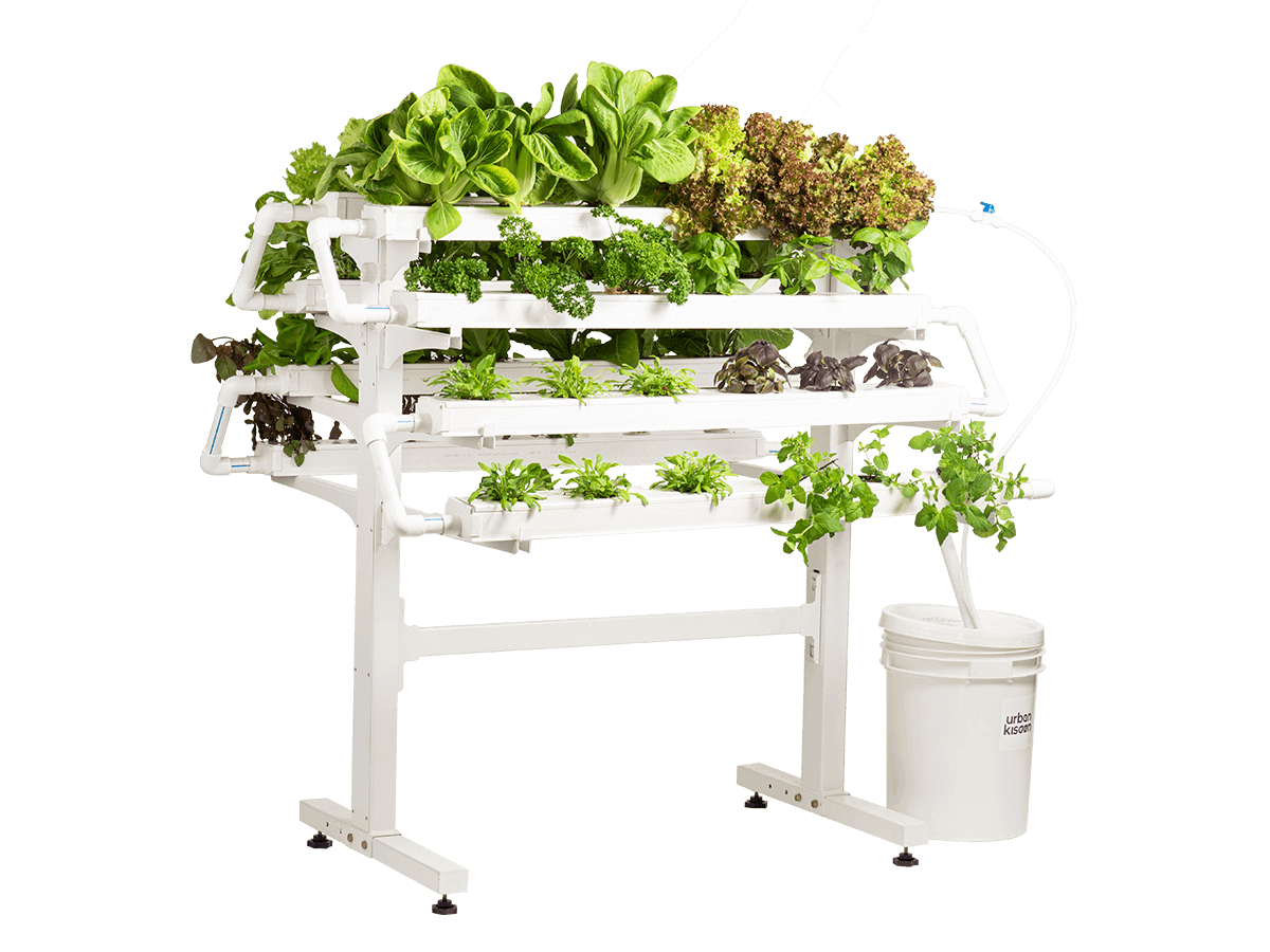 Hydroponics 48 plant model kit from Urban Kisaan based on soil less indoor farming technology